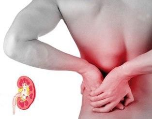 alimentos con acido urico y purina cura casera para acido urico sintomas acido urico elevado